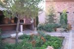 Zonas verdes patio