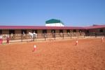 Rutas a caballo en Alarcón